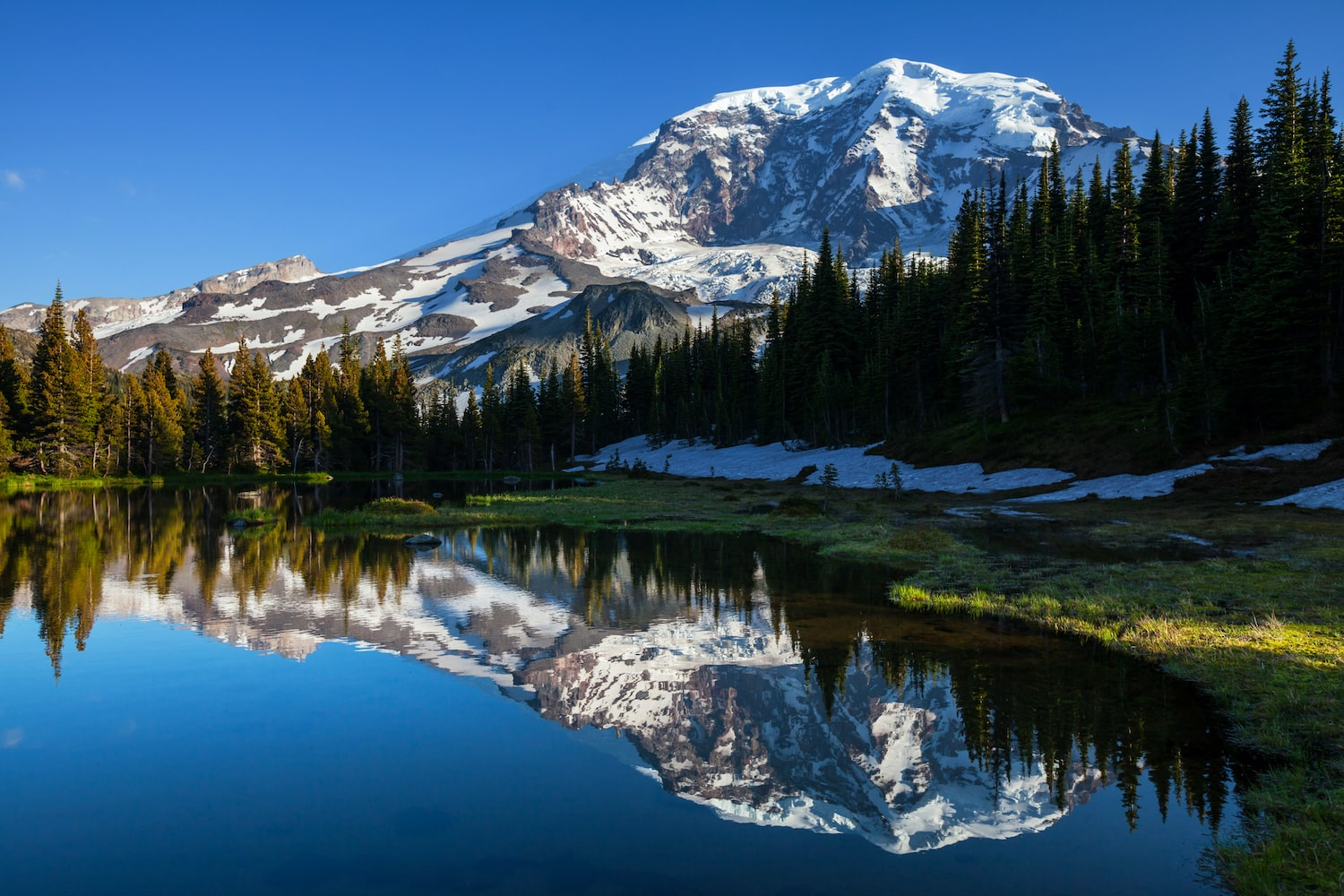 hotels near mt rainier national park