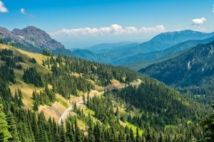 best hikes in olympic national park