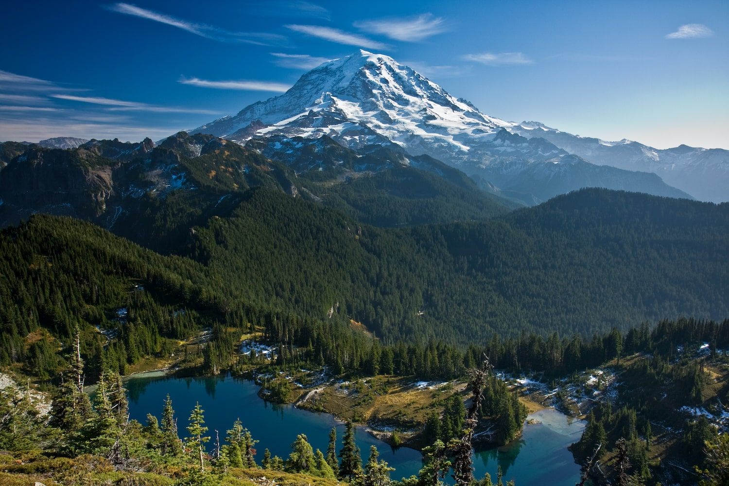 ultimate guide to mount rainier national park