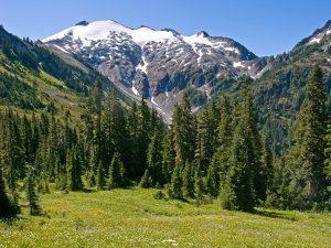copper ridge loop trail 3