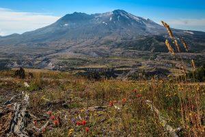 desolation peak trail 5