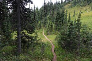 rampart ridge trail 4